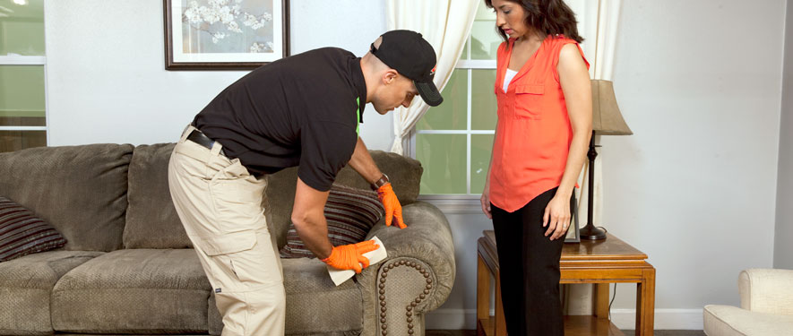 Xenia, OH carpet upholstery cleaning